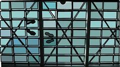 calendar images (wild teasel) Tags: glassfloor nordicimages