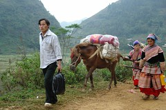 Men of Bac Ha - coming home (CharlesFred) Tags: man flower male men asian northwest north tribal vietnam tribe minority mountians hmong bacha flowerhmong