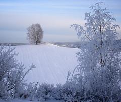 Ten months ago (Krogen) Tags: winter nature norway landscape norge vinter natur norwegen olympus c7070 noruega nes scandinavia akershus romerike krogen landskap noorwegen noreg skandinavia udnes