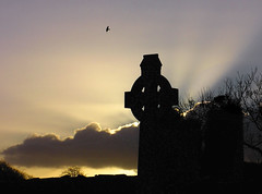 Celtic Cross Dawn (beyond the pale) Tags: ireland winter sky cloud sun tree bird church silhouette stone dark dawn flying branch cross branches wing eire rays celtic burst rise limerick celticcross crepuscular glide 750uz croom 67points olympus750uz