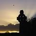 Dawn Cross Photo 4