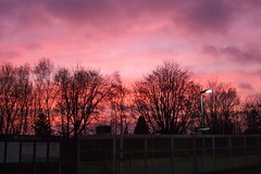Earlswood sunrise today