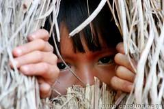 Olhar (ACNegri) Tags: xingu indio tribo indigena kuikuro