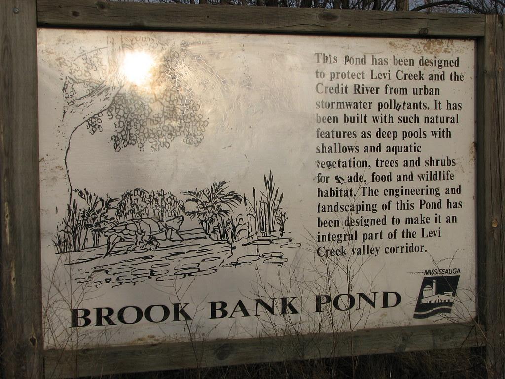 Brook Bank Pond, Levi Creek, Mississauga