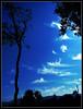 (UrvishJ) Tags: pictures india stock images online buy getty sell joshi gujarat ahmedabad stockphoto stockimage urvish impressedbeauty indianphoto stockpicture indianpicture urvishj urvishjoshi urvishjphotography urvishjoshiphotography ©urvishjoshiphotography