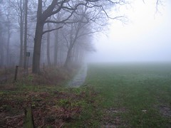 18 dec 06 misty. (guus timpers) Tags: wood mist misty landscape bos twente almelo gravenallee