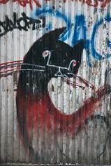 Bloody Cat (Giant Ginkgo) Tags: graffiti spain europe granada andalucia espana