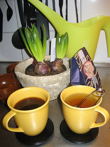 08:41 - uppe tidigt, gör te till mig (från Porto Formoso) och kaffe till Kalle