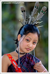 Jungle Queen B 05 (Arif Siddiqui) Tags: people india portraits places tribes northeast arif arunachal tribals siddiqui arunachalpradesh northeastindia jairampur tangsa jugli arunachalpradeshindia arunachali