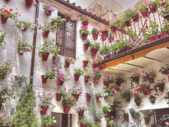 Patio cordobs (marathoniano) Tags: city travel flowers espaa flores primavera town spain village andalucia patio cordoba espagne hdr lanscape potted maceta photomatix p1f1 marathoniano aplusphoto