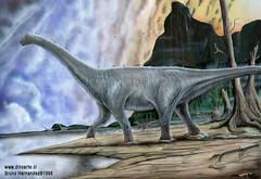 Titanosaurus leave tracks in Termas del Flaco Chile central valley
