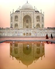 Taj reflection