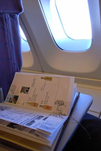 traveler's notebook in flight
