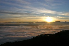 (Abra K.) Tags: sun clouds sunrise switzerland zurich zrich zuerich uetliberg heavenly sunbeams helia seaoffog