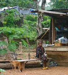 Girl, dog and shop (LindsayStark) Tags: africa travel people girl children war sierraleone conflict humanrights humanitarian displaced idpcamp refugeecamp idps idp humanitarianaid emergencyrelief idpcamps waraffected