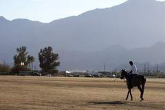 Practice 1 (The Vigilante Photographer) Tags: california horses horse polo indio obregon griffinranch eldoradopoloclub
