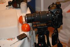 Super Macro Setup (hkkbs) Tags: macro lens nikond70 100views 400views 300views 200views 500views 800views 600views 700views 1000views lensreversal 60mmf28dmicro sigma105mmf28ex nikond200 900views 1100views nikkor50mmf18d supermacrosetup nikonsb800flash 5555mmlensreversalring 5855mmstepdownring velbonsupermagslide adidtr3wirelesscameracontroller
