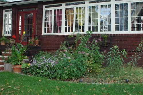 Front Garden, September 2006