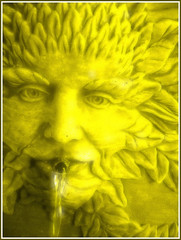Green Man turned gold (Jen's Photography) Tags: color computer manipulated digital gardens outside nature macro close job work shop objects things still life concerete greenman water spout squirting face leaves mythology orange explore interestingness nikon scout fdsflickrtoys jensphotography bighugelabs fairytale object