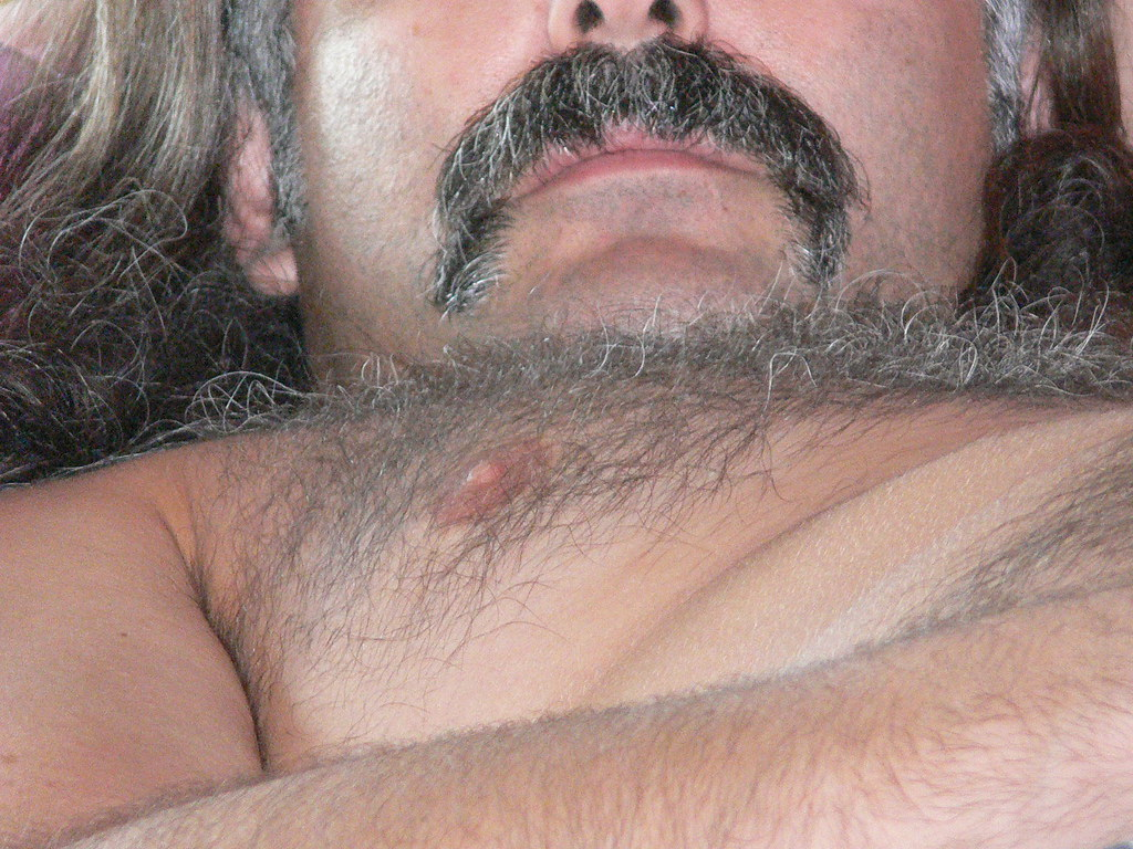 gay hairy daddy
