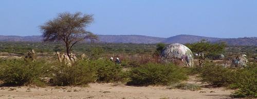 Somali houses near Borama