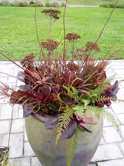 Soest Winter Pot