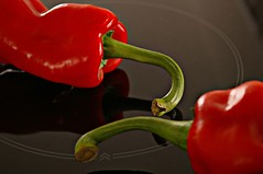 Red Peppers (henx fotojam) Tags: red pepper reflextion