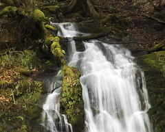 Don't Go Chaisng These (angeLOfVirtuE) Tags: mountains nature forest landscape waterfall moss long exposure gatlinburg