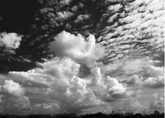 Swirling Turbulence (espion) Tags: blackandwhite clouds skyscape singapore pf 500v turbulence blueribbonwinner 123bw impressedbeauty pf07