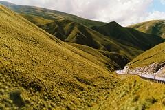 New Zealand (MarcodeJong) Tags: new nature de landscape zealand marco jong bizar specland