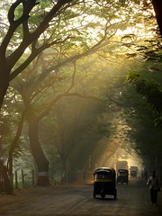 My favorite mode of transport (shubhangi athalye) Tags: street light sunlight india haven green morninglight earlymorning foliage bombay maharashtra streams canopy rickshaw mumbai dreamscape morningmist lightstreams the talltrees dramaticlight aarey playoflight insidethetunnel goregaon anawesomeshot sakaal favoritetransport theaareyhaven prakashzot subahsubah
