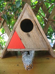 A birdhouse for our soul