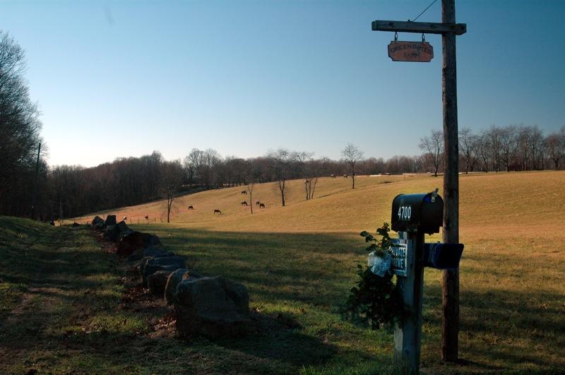 Greenbrier Farm