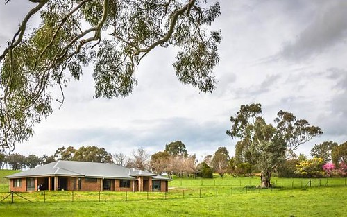 5172 Muttama Road, Cootamundra NSW 2590