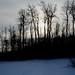 noon sun in December