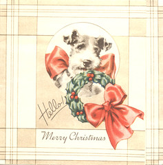 Vintage Christmas Card Puppy