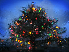 Happy Christmas! (lev) Tags: christmas pink blue red orange tree green wet yellow lights droplets colours bokeh twinkle sparkle rainy waterdrops raining windscreen sparkly twinkling isleoflewis stornoway