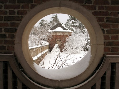 Winter through a Window