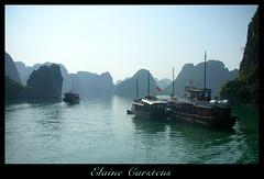 Junks in HaLong Bay (mliebenberg) Tags: vietnam gmt elainecarstens