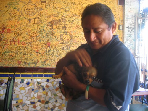 Roberto and Chihuahua