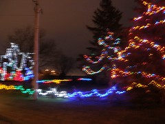 Fairfield Park Lights
