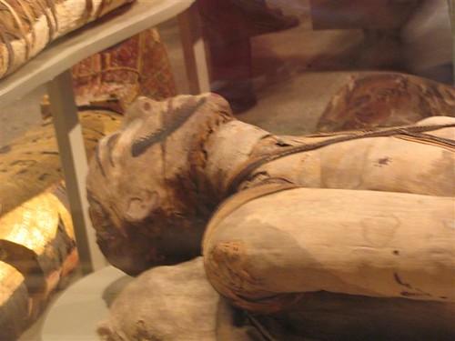 המוזיאון המיצרי by aviha987.