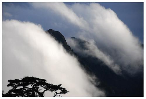 藏在雲中的能高主