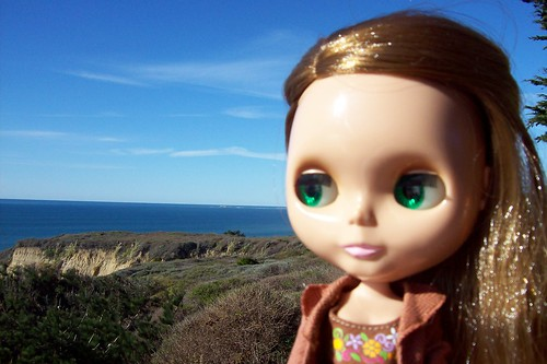 Ginger in Pescadero