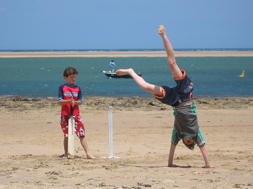 cricket & cartwheels