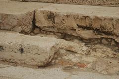 Israel-Jerusalem (wildbrumbi) Tags: israel jerusalem templemount