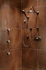 Traditional Total Escape Custom Shower (dreambrizo) Tags: shower bath faucet brizo customshower