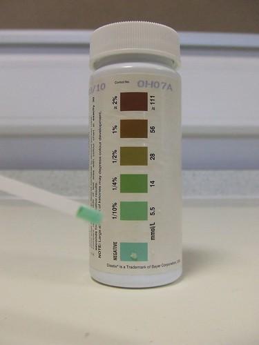 testing seeds starch iodine
