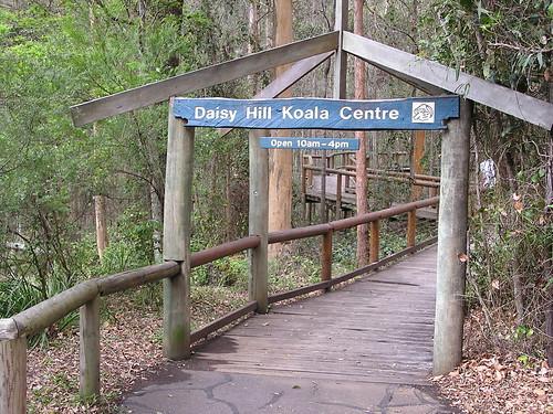 Daisy Hill Koala Center