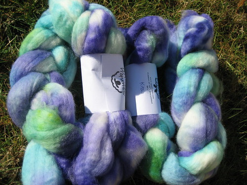 Spunky Eclectic BFL in Kites